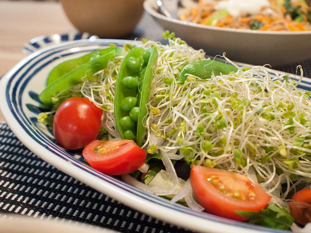 スーパースプラウトのサラダ