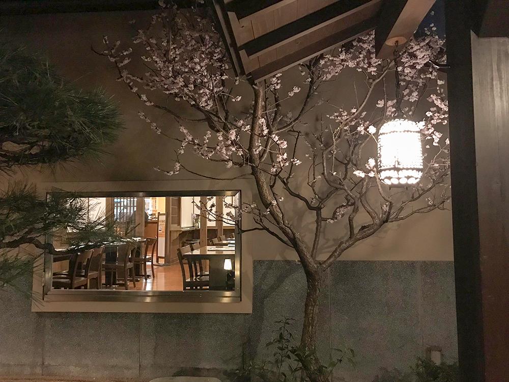 さやの湯の桜