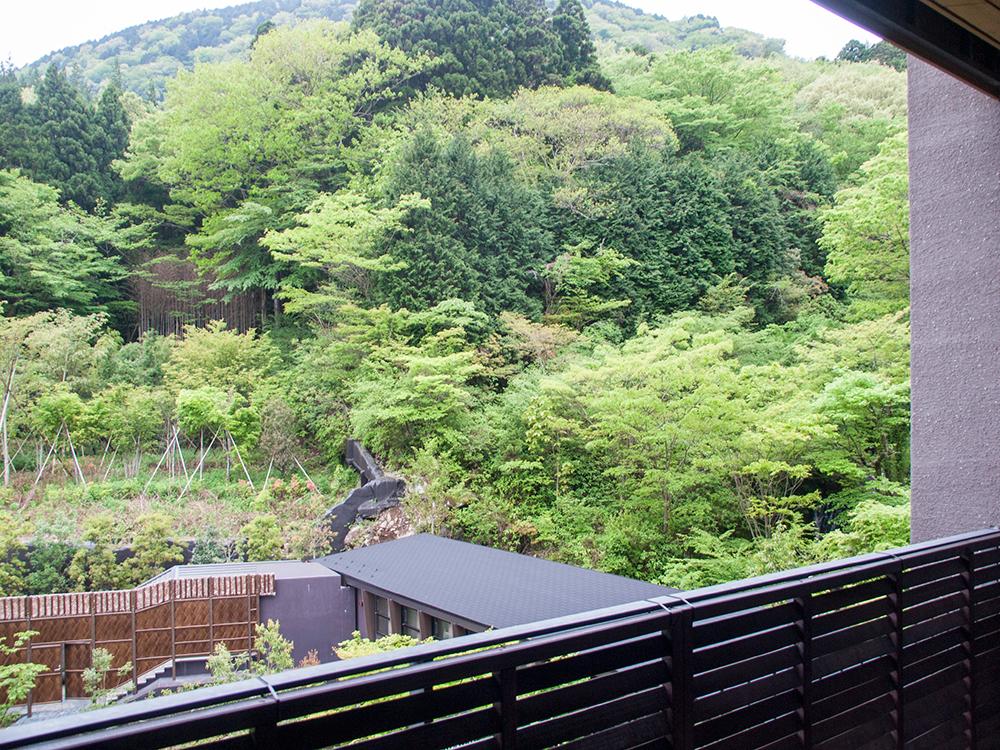 箱根天悠 標準客室からの眺め