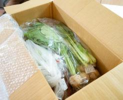 パルシステムの有機野菜お試しセット