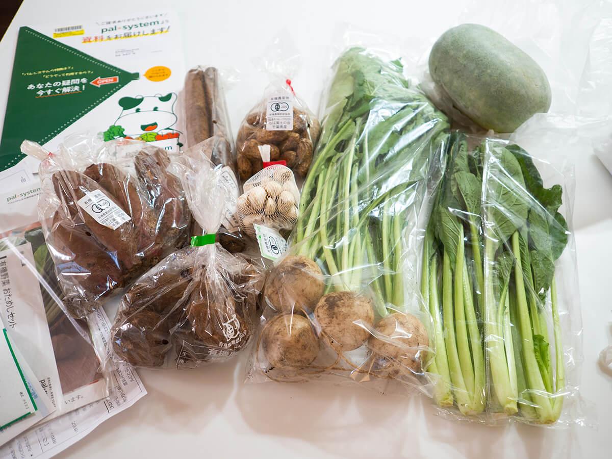 パルシステム有機野菜お試しセットの内容