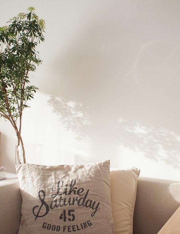 クッションと壁の木の影