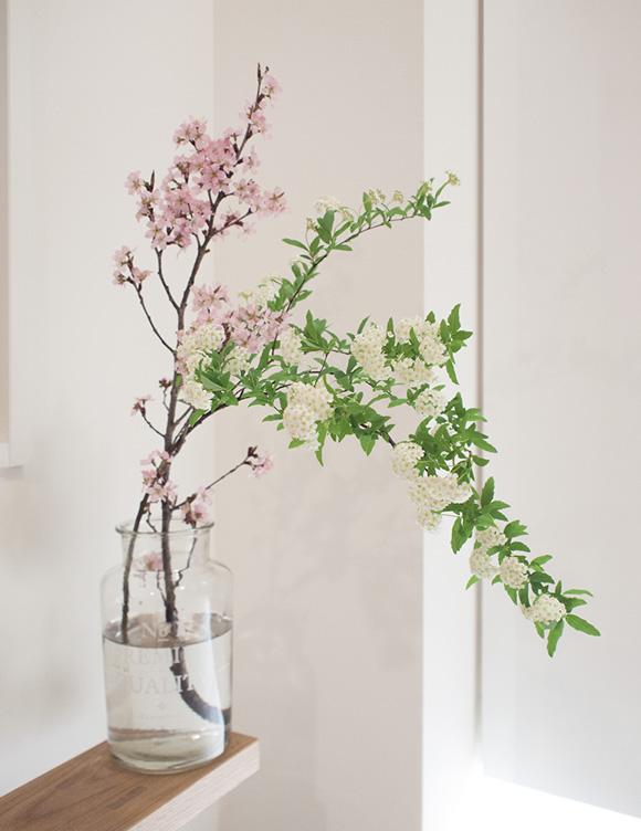 玄関に飾った啓翁桜と小手毬