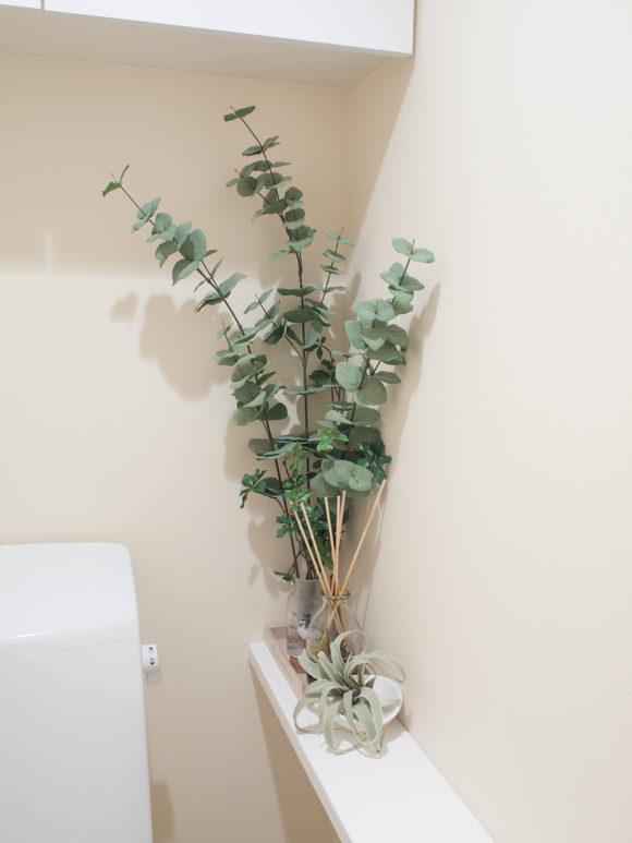 トイレ フェイクグリーン ニトリ