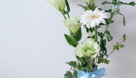 久しぶりのお花とTUBTRUGSハーブ栽培キットのその後。