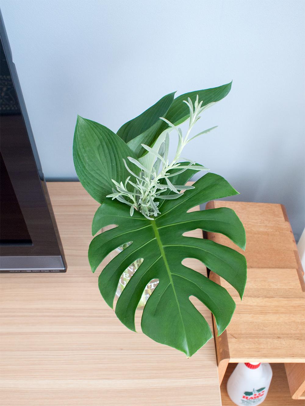 インテリアグリーン 切り葉