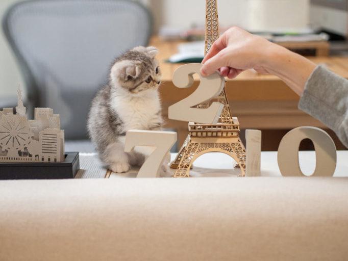 インテリア小物と子猫