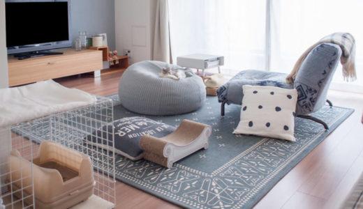 猫を飼うと家具や壁がボロボロになる?我が家の被害状況。