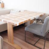 テープを貼ったテーブルと猫