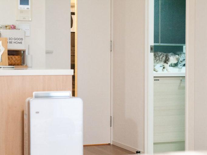 洗面台とキッチンカウンターの高さ比較