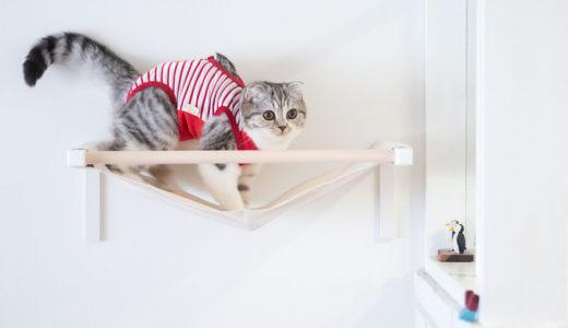シンプルな猫ハンモックを壁に取付けました。石膏ボードOK!