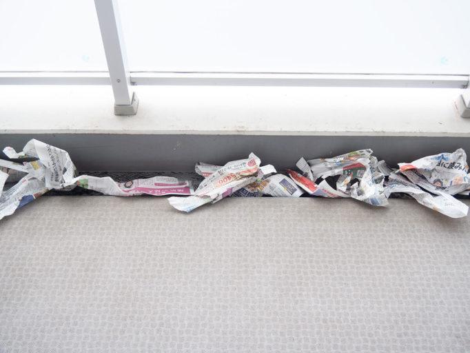 ベランダの溝にまいた新聞紙