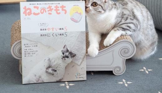 [ねこのきもち掲載記念]猫と暮らすシンプルインテリアまとめ