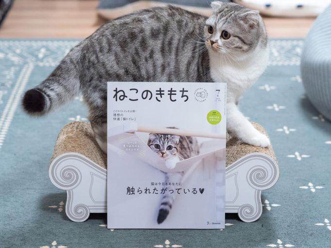 雑誌ねこのきもちと猫