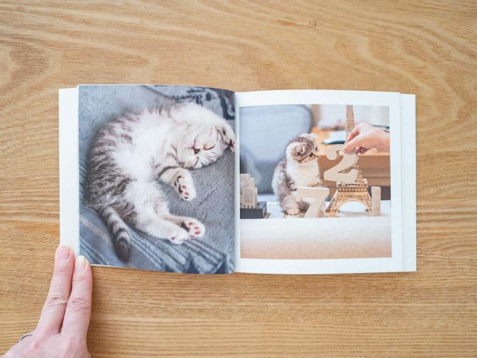猫のフォトブック