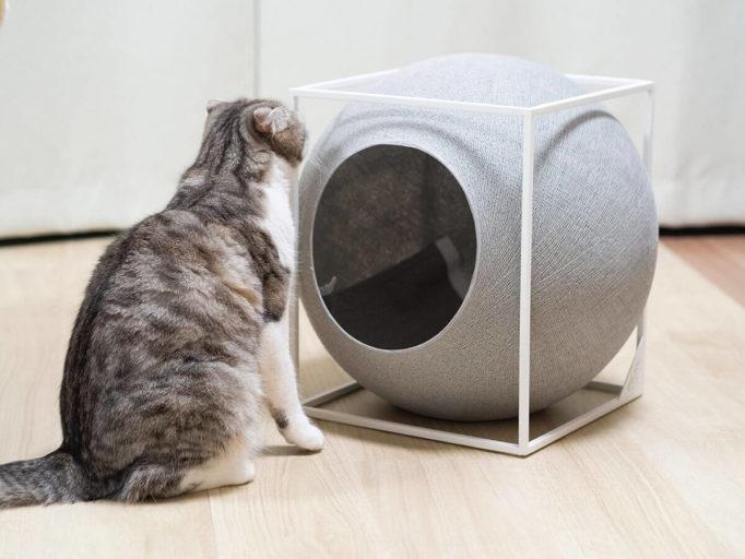 meyouの猫ハウスと猫