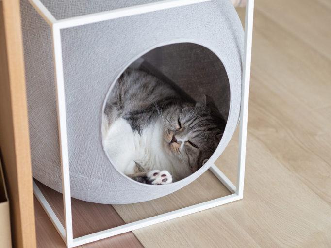 おしゃれな猫ハウス
